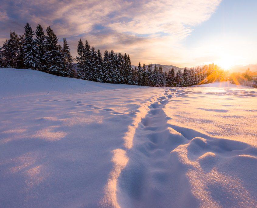 Winterlandschaft | Fotograf: Michael Stabentheiner